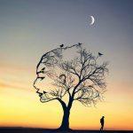Необыкновенные фотоманипуляции Abdullah Evindar