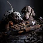 Еда как искусство. Художественная фотография от Эйми Твиггер