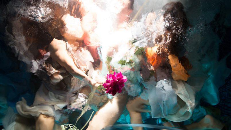 Подводные фотографии Кристи Ли Роджерс